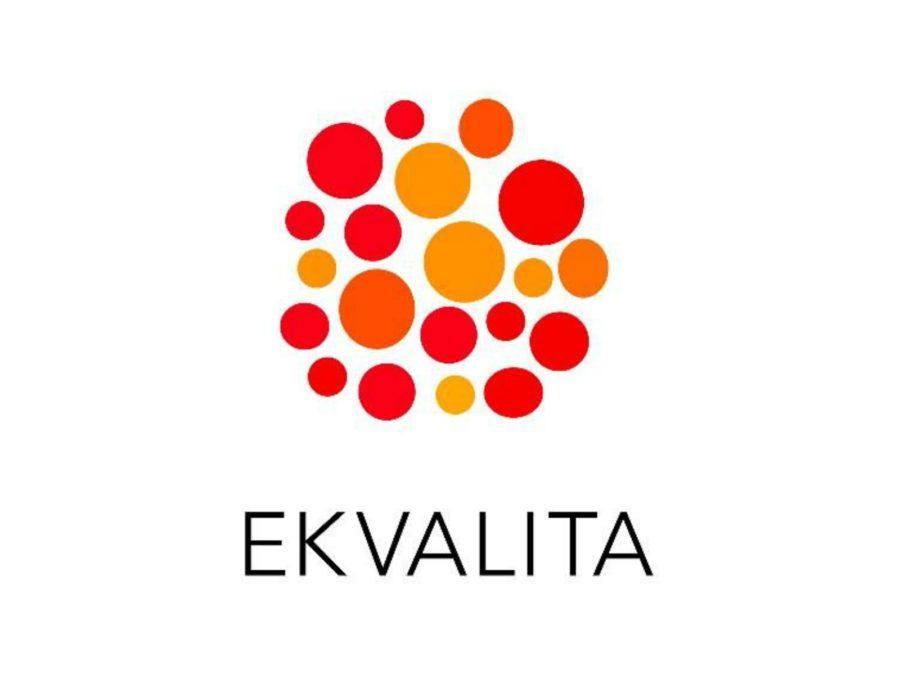 På Ekvalita hittas kunskap om hur jämställdhet, inkludering och likabehandling kan främjas ur ett normmedvetet perspektiv i både stora som små organisationer, internt och externt. Vi erbjuder utbildningar, material- och metodutveckling, främst i Sverige och Finland sedan 2008.